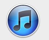 """""""iTunes""""の情報"""