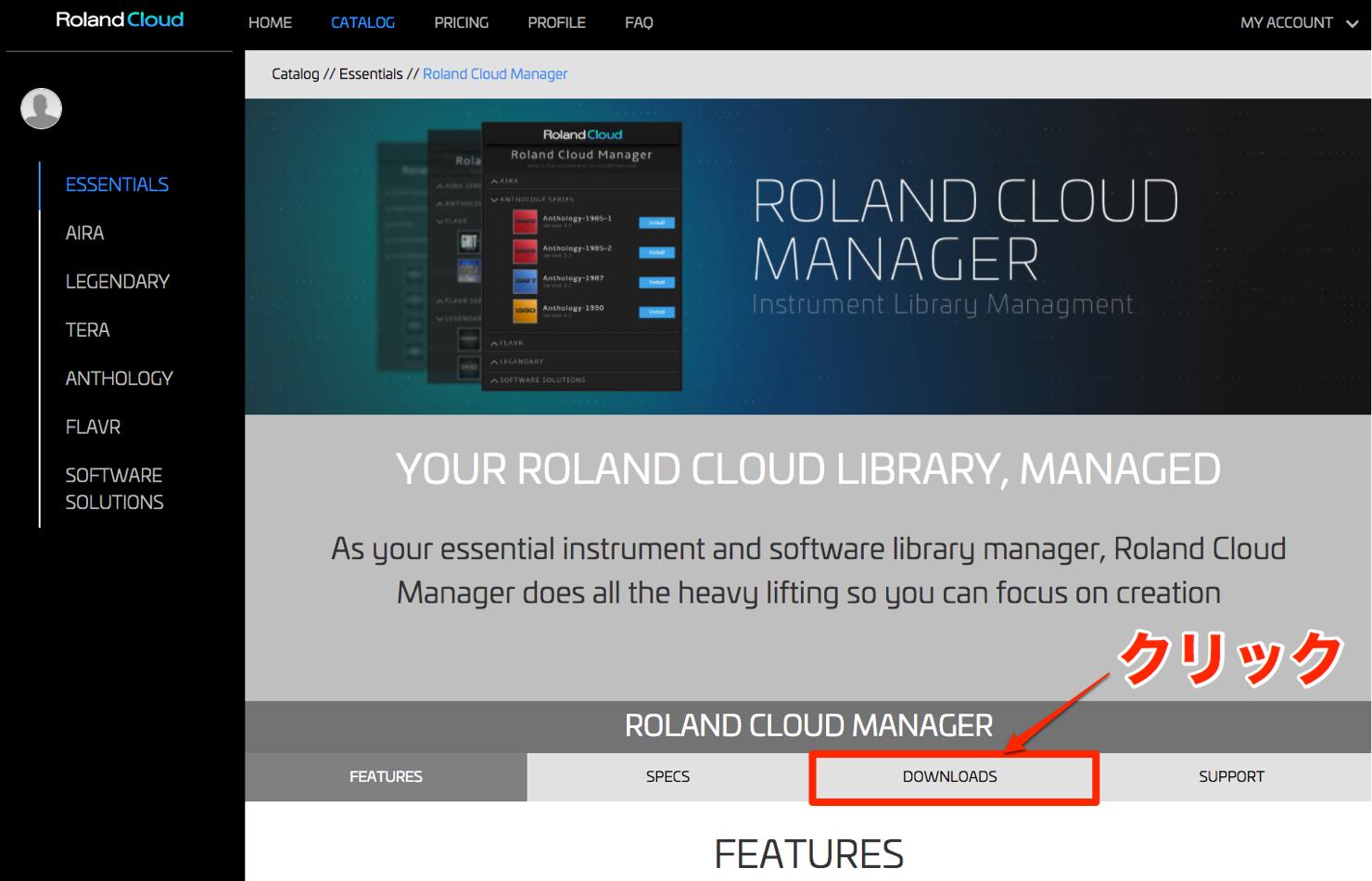 Roland Cloud_4