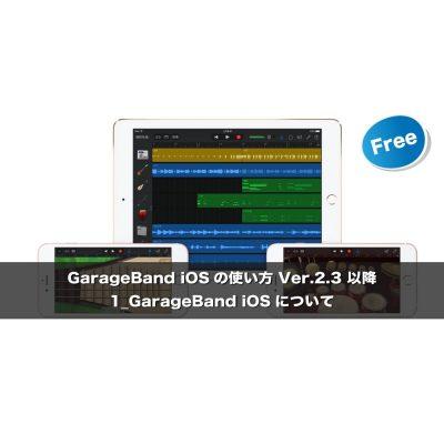 GarageBandi-OS_1-eye