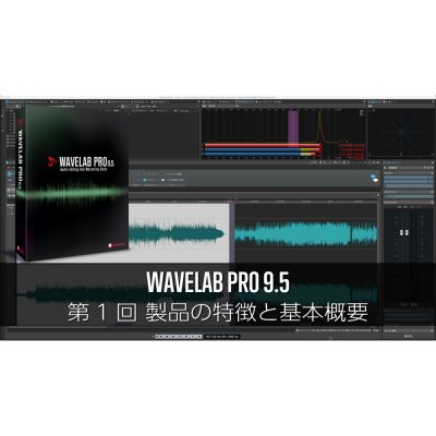 WAVELAB-Pro-95-1-eye