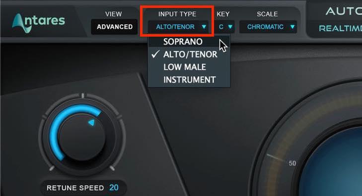 input type