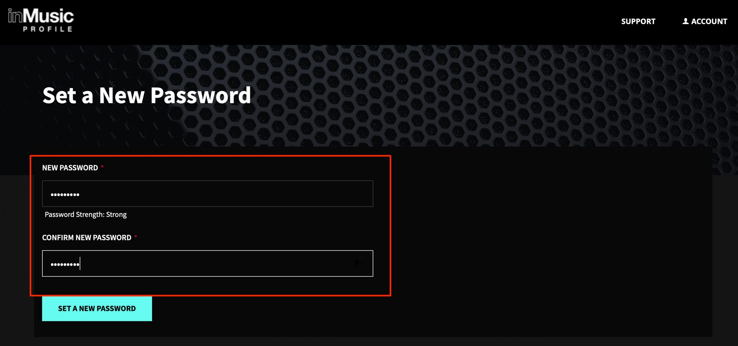 Set_a_New_Password
